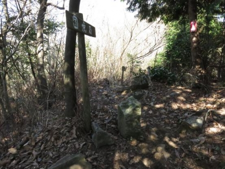 カラ迫岳サバノオ 131