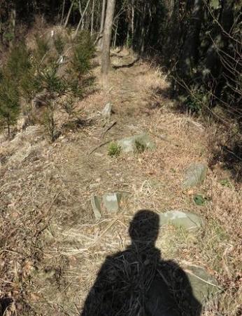 カラ迫岳サバノオ 123