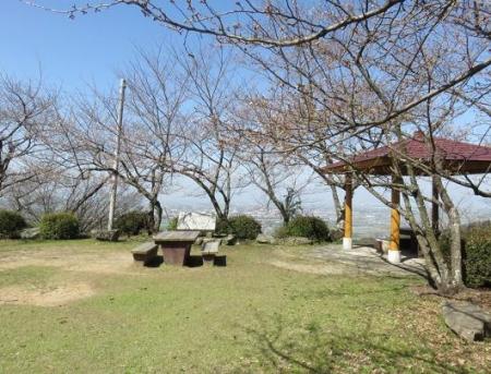女山竹屋の桜 142