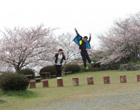 桜満開 176