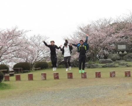 桜満開 180
