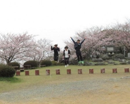 桜満開 177