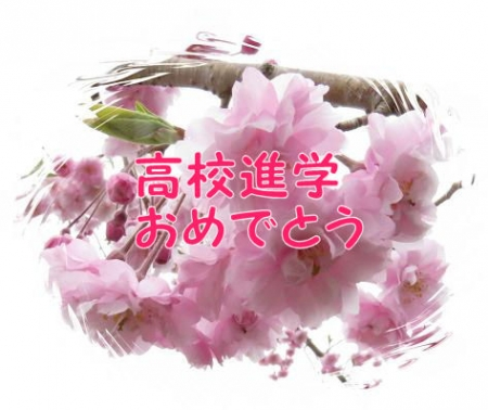 桜満開 183