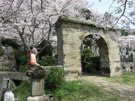 一本桜 133