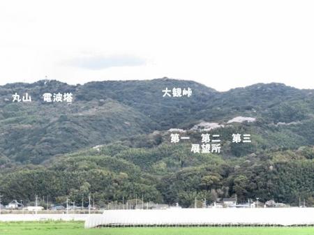 一本桜 153