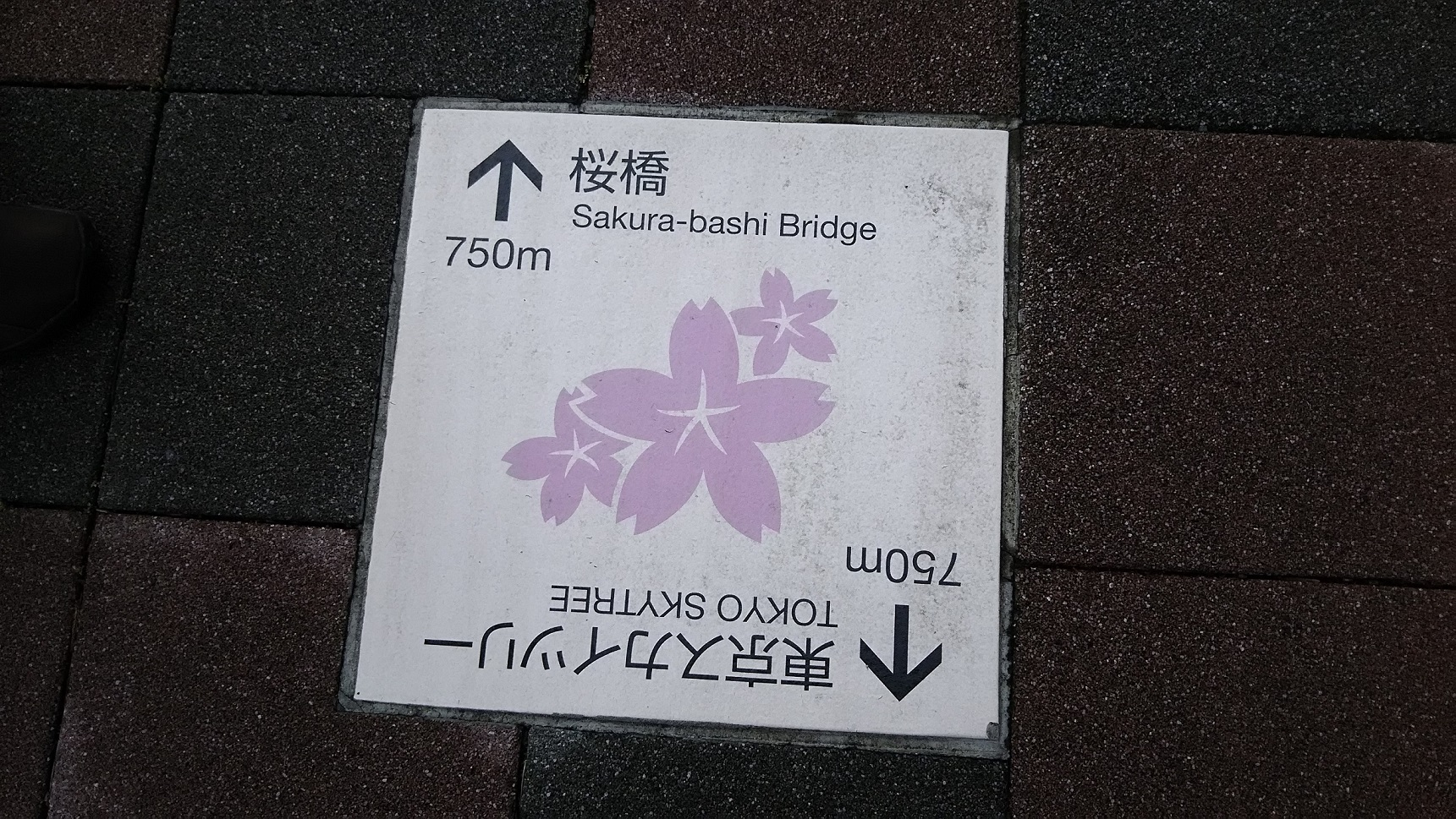 aDSC_0069.jpg