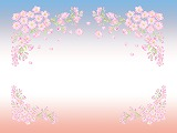 桜背景0411