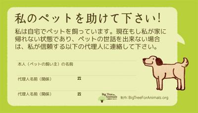 petcard.jpg
