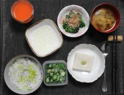 しらす丼とごま豆腐のさっぱり御膳
