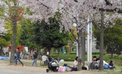 桜吹雪の公園