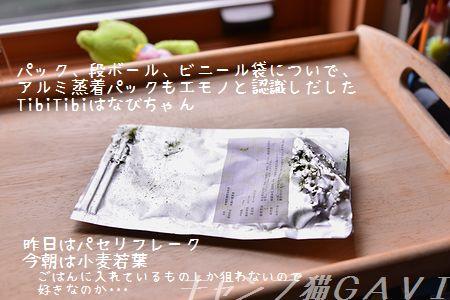 160403_3040.jpg