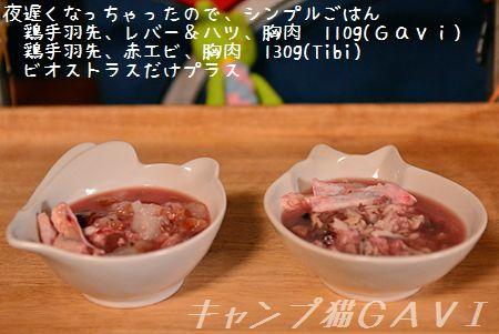 160410_3558.jpg