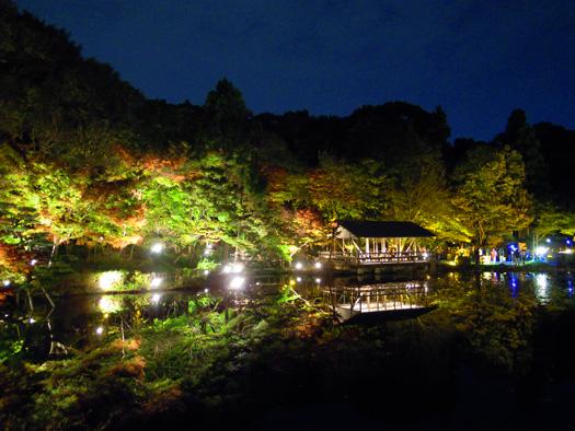 東山動植物園 紅葉ライトアップ 奥池。