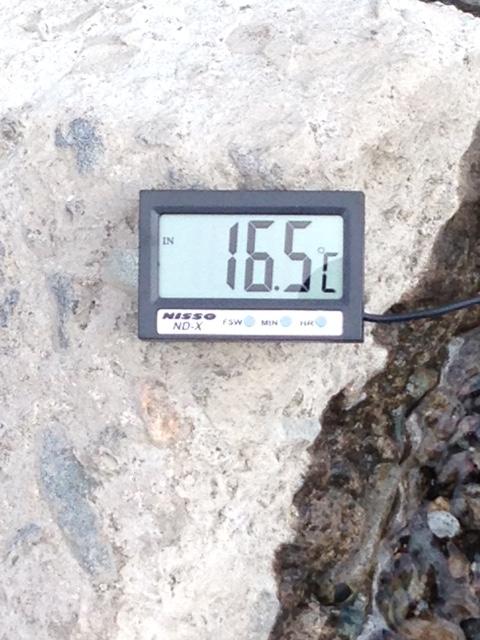 20151028坂東堰水温