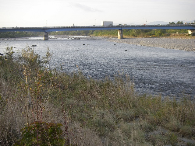 PA300621大渡橋1左岸上流.jpg