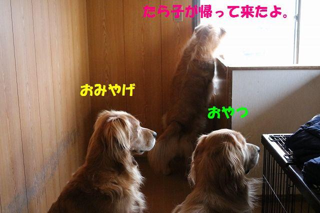 IMG_7421.jpg