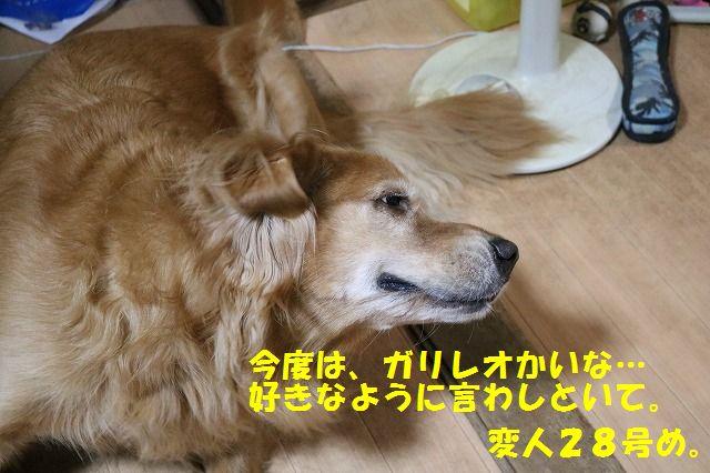 IMG_8408.jpg