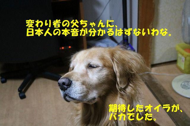 IMG_8418.jpg