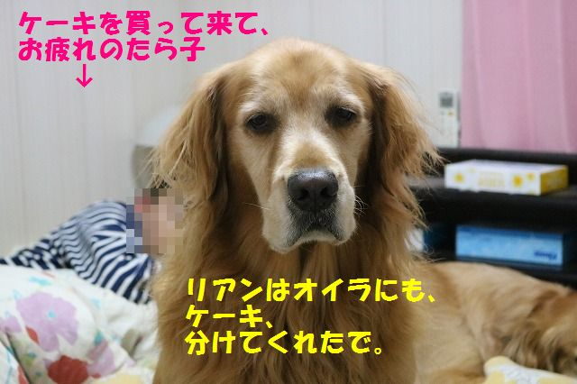 IMG_8666.jpg