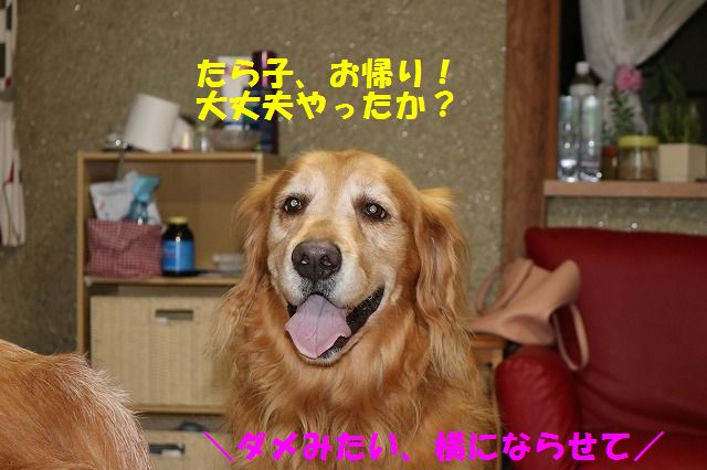 IMG_8834.jpg