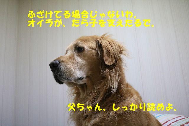 IMG_8865.jpg