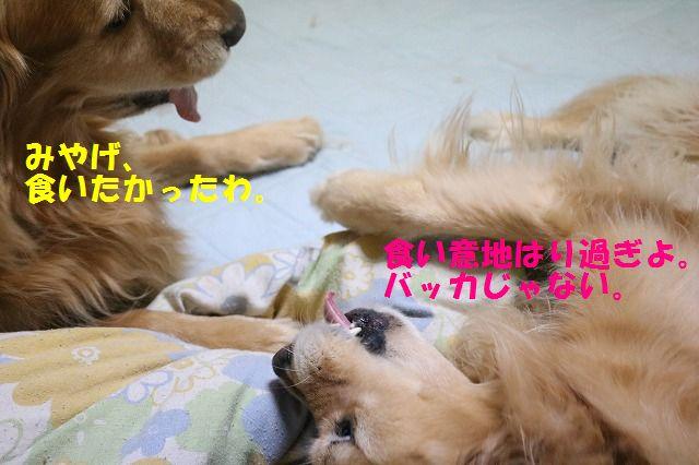 IMG_8944.jpg