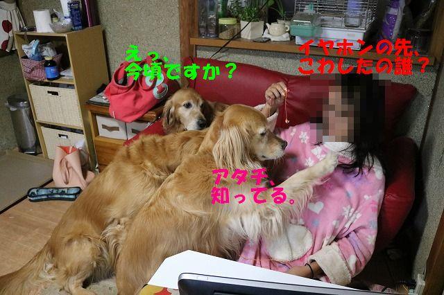 IMG_9963.jpg