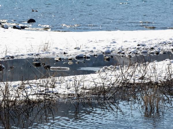 河口湖 K