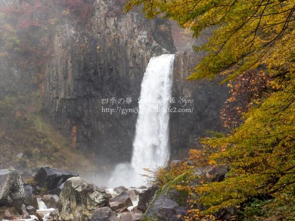 苗名滝 D