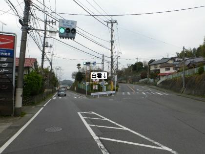 町田の白看03