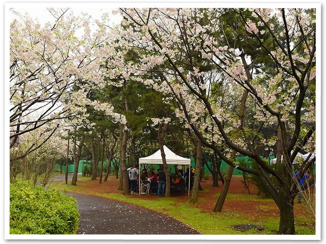 BBQ☆潮風公園