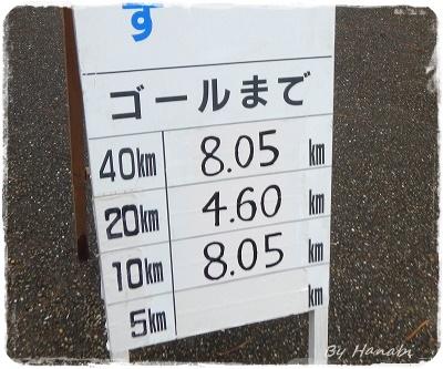 DSCN0769_201511162124100c2.jpg
