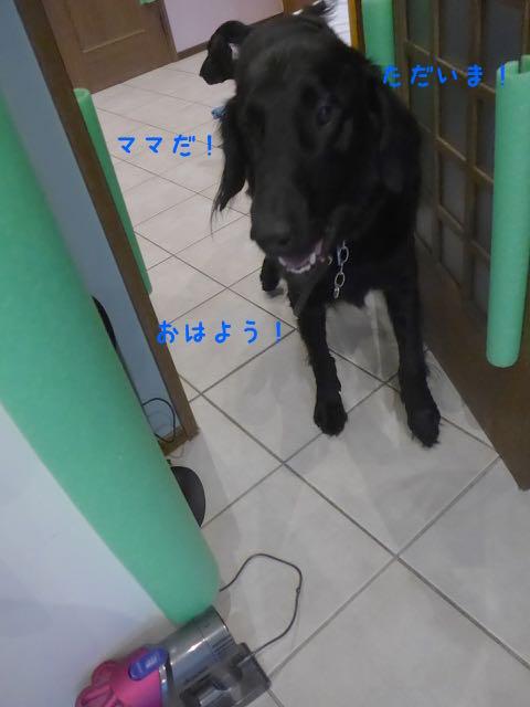L1070123.jpg