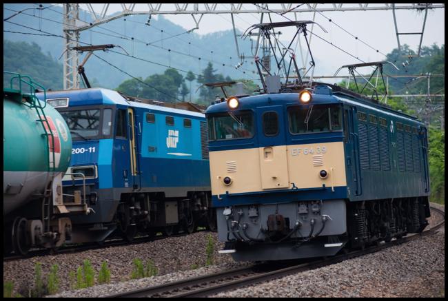 DSC7564.jpg