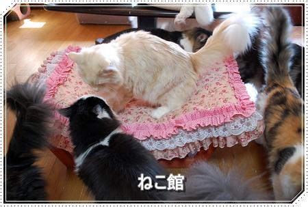 blog2_201603281421165ac.jpg