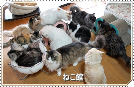 blog_20160327155106756.jpg