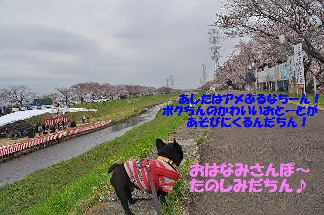 DSC_0028_20160404092702b20.jpg