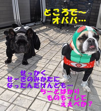 DSC_0055_20160329135046b6c.jpg
