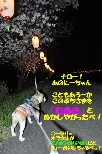 DSC_0062_201604041433557fb.jpg