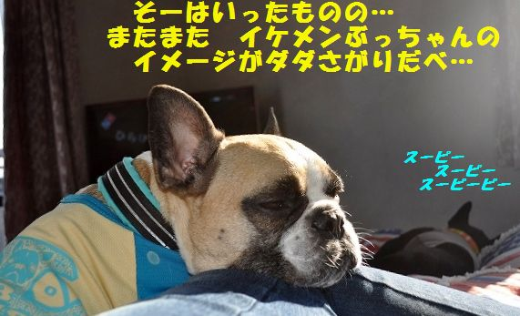 DSC_0084_201603280903164e5.jpg