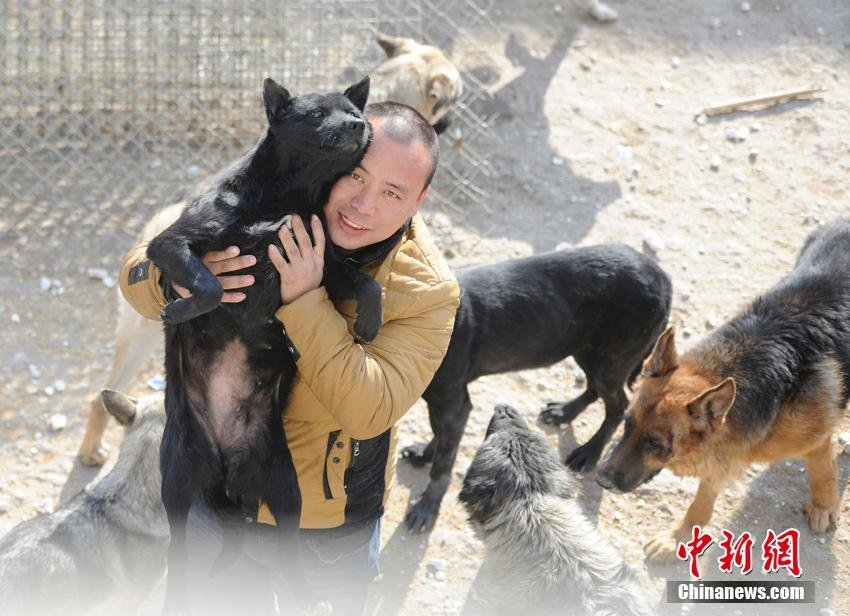 changchun-man-rescues-stray-dogs.jpg