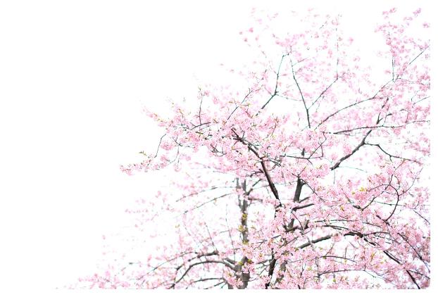 2016-03-29-03.jpg