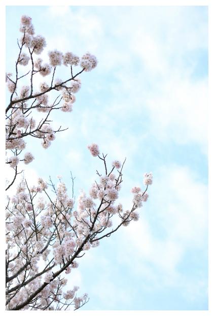 2016-03-29-29.jpg