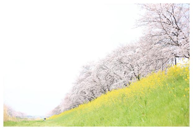 2016-04-10-10.jpg