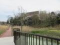 水主池公園4