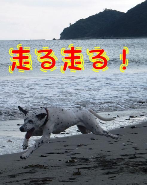 blog_1115_102936(1).jpg