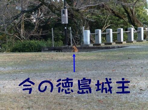 blog_1115_160600.jpg
