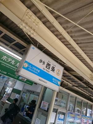 DSC_0111_408.jpg