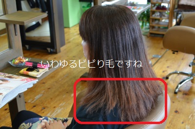 DSC_0243_2559_20151111180526108.jpg