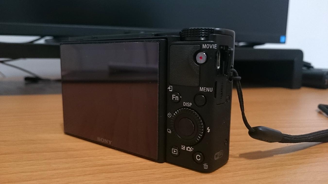 rx100 (29)